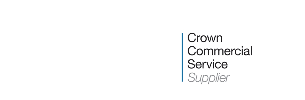 Supplier-Digital Outcomes and Specialist 2