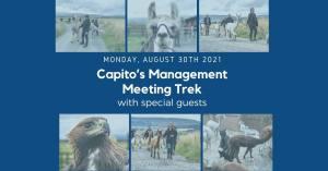 Capito's Alpaca Trek Management Meeting