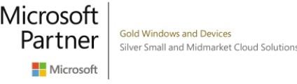 Capito-Gold-Silver-Microsoft-Partner-Logo