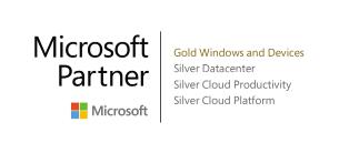 Public Sector, Microsoft partner